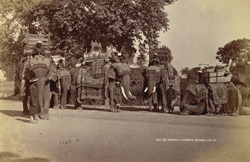 H.E. the Viceroy's elephants, Benares